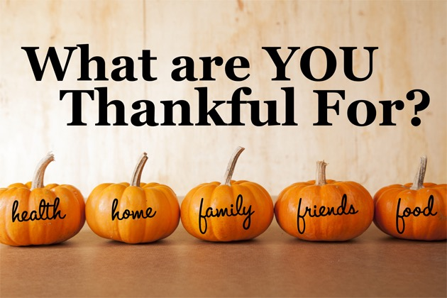 The OFSC Is Thankful For…